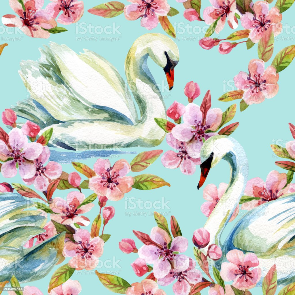 Watercolor swan and cherry bloom vector art illustration