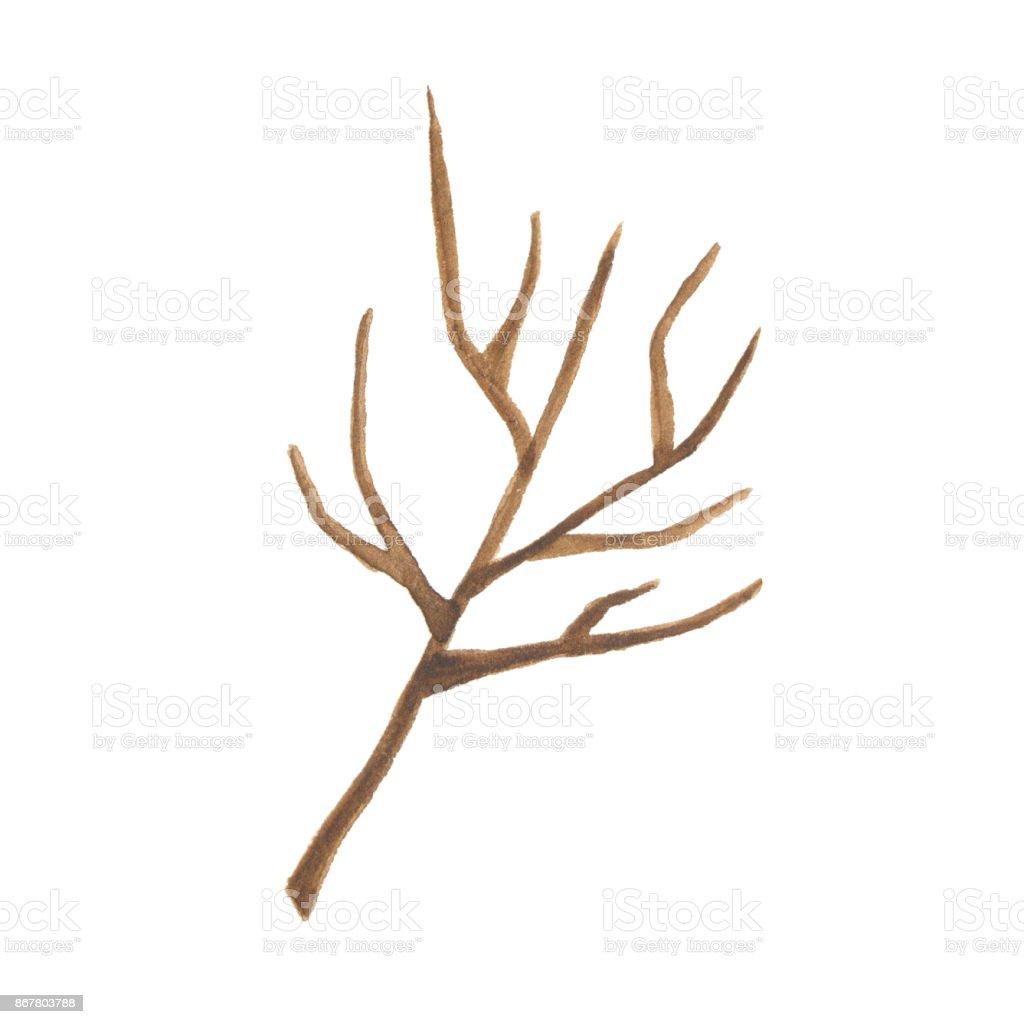 Beyaz Arka Plan üzerinde Izole Suluboya Ağaç Dalı Stok Vektör Sanatı