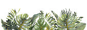 Watercolor tropical border in trendy colors. Tropic leaves arrangmant