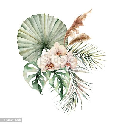 Watercolor tropical bouquet with orchids and palm leaves. Hand painted flowers, coconut and monstera leaves, pampas grass. Floral illustration isolated on white background for design, print