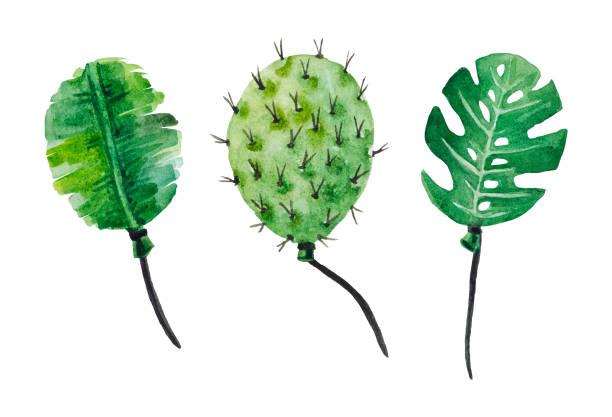 Watercolor tropical flower balloons. vector art illustration