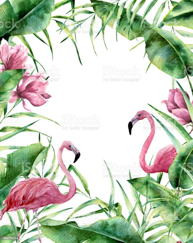 Watercolor Tropical Frame Hand Painted Exotic Floral Border With
