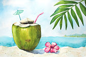 istock Watercolor tropical landscape with coconut 909661268