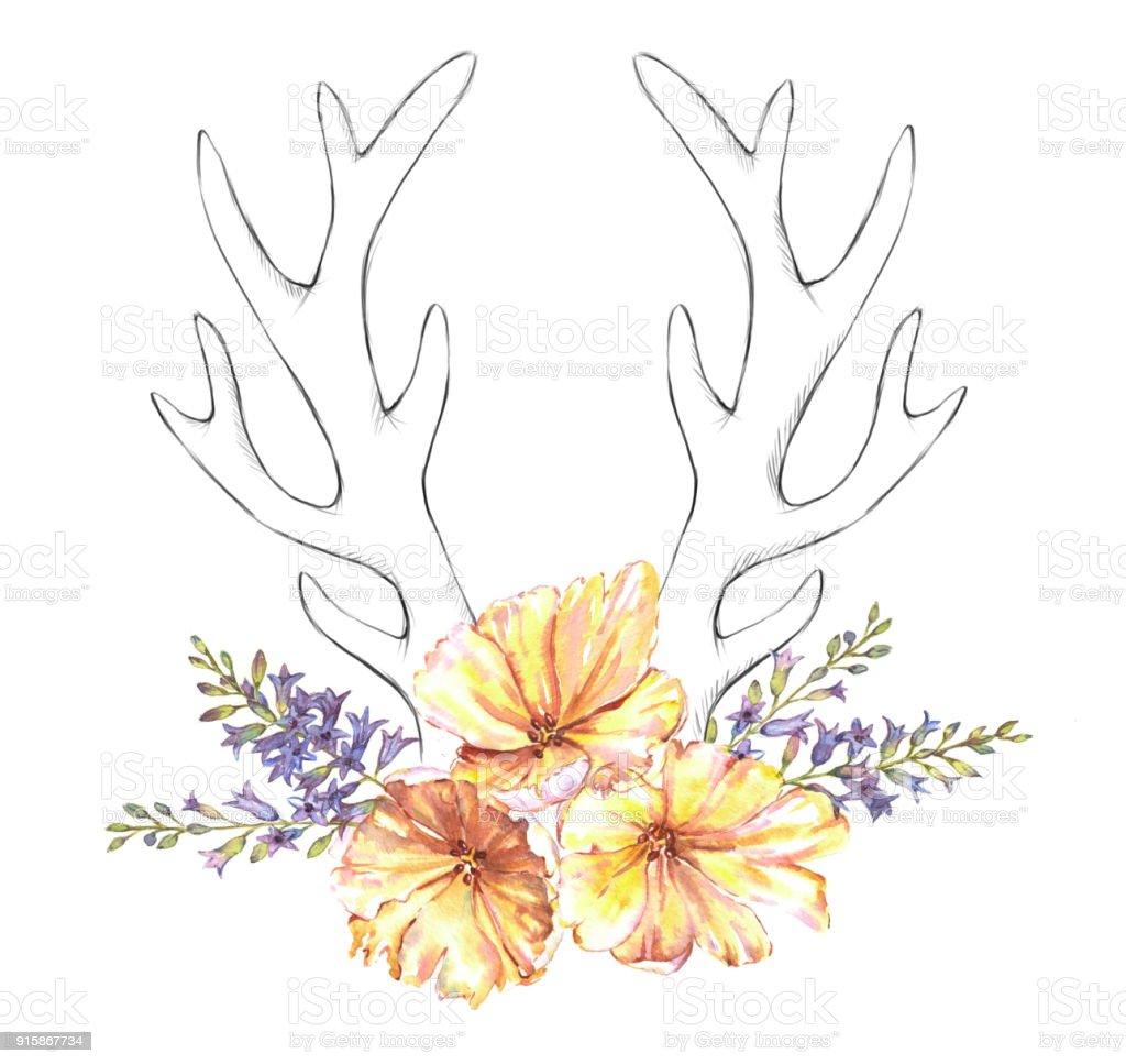 Sulu Boya Lale çiçek Sümbül Ve Kroki Geyik Boynuzu Stok Vektör