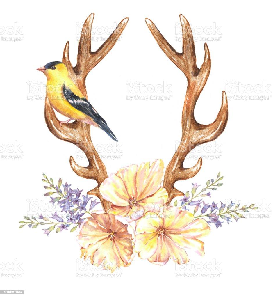 Sulu Boya Lale çiçek Sümbül Kuş Ve Geyik Boynuzu Stok Vektör Sanatı
