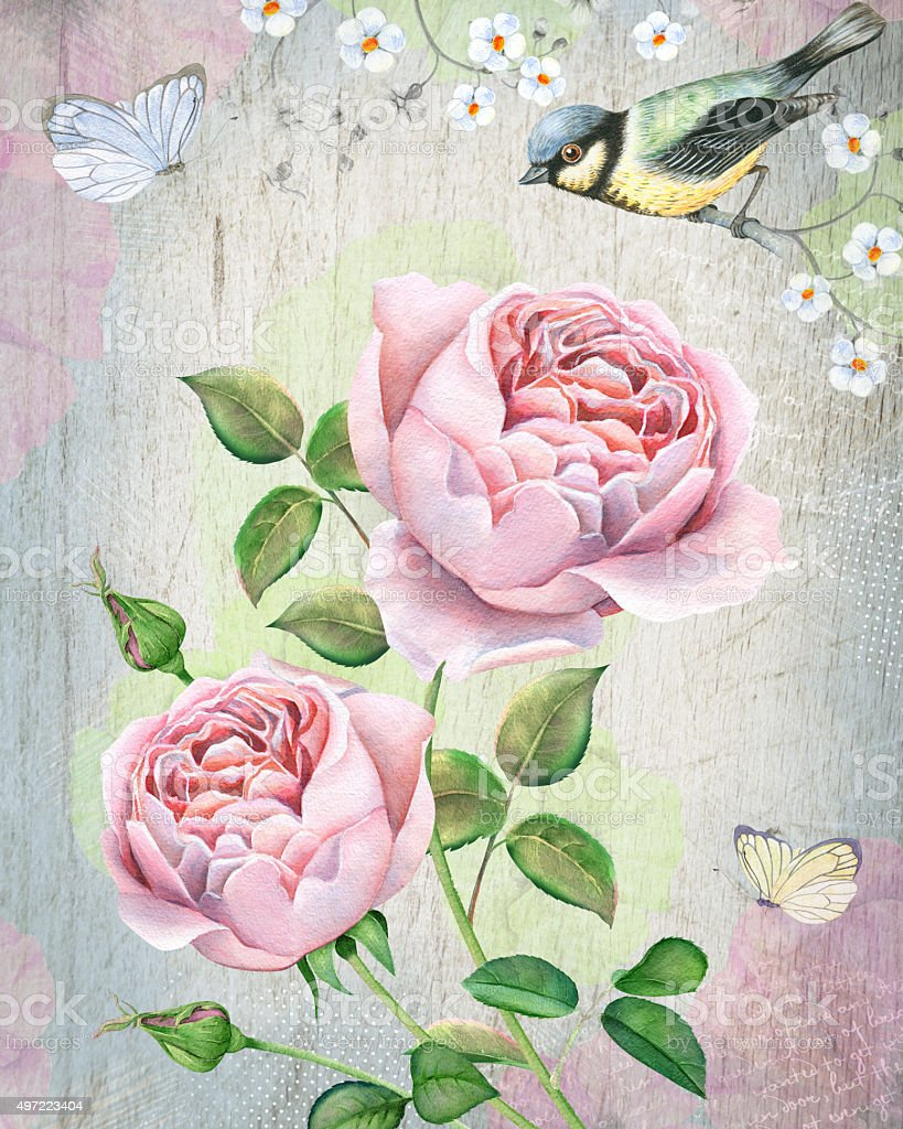 Watercolor vintage design with english roses and bird vector art illustration