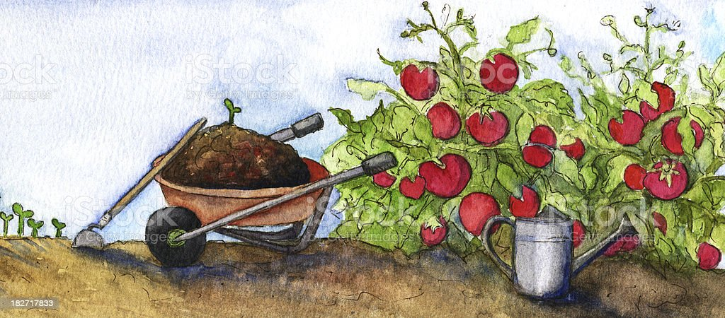 Watercolor wheelbarrow with tomato plants in Garden royalty-free watercolor wheelbarrow with tomato plants in garden stock vector art & more images of agriculture