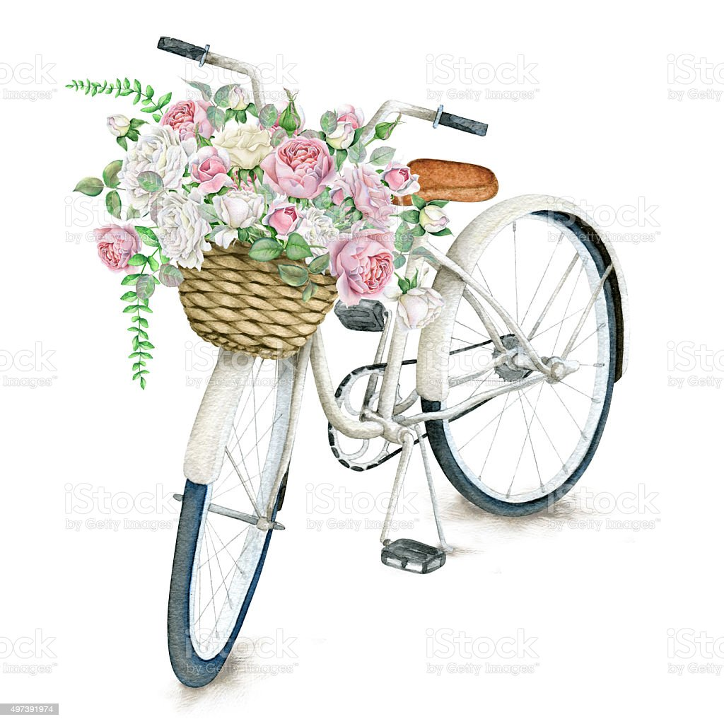 Watercolor white bicycle with beautiful flower basket isolated on watercolor white bicycle with beautiful flower basket isolated on white background royalty free watercolor white izmirmasajfo