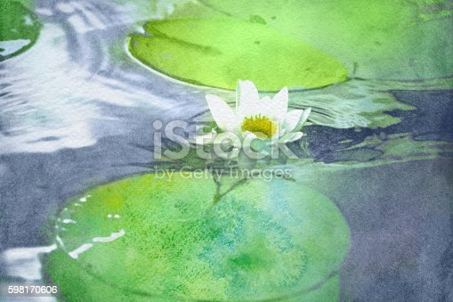 watercolor white water lily