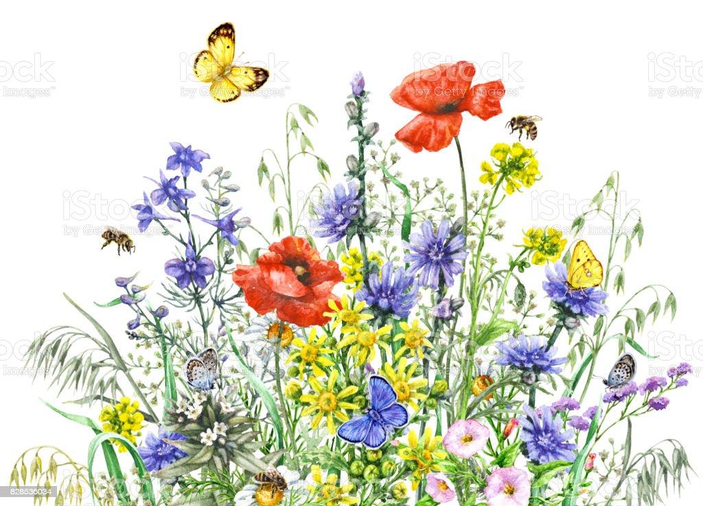 aquarell wiesenblumen und insekten stock vektor art und mehr bilder von apis 828536034 istock. Black Bedroom Furniture Sets. Home Design Ideas