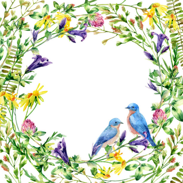 Watercolor wild flowers wreath and bluebird card vector art illustration