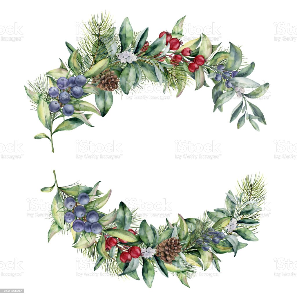 Watercolor Winter Floral Branch With Red Berries Juniper And