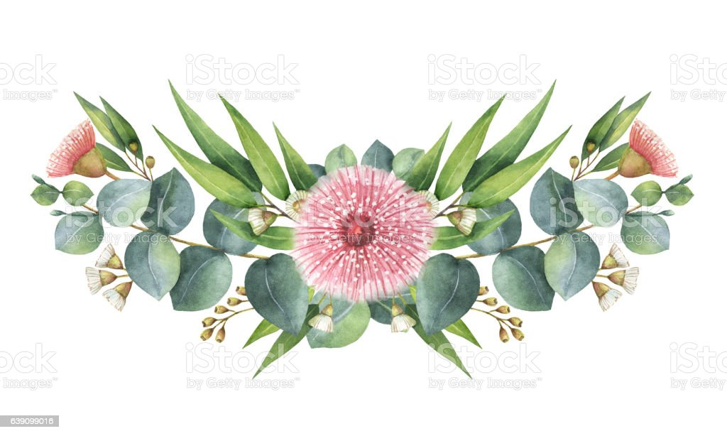 Watercolor wreath with green eucalyptus leaves and branches. vector art illustration