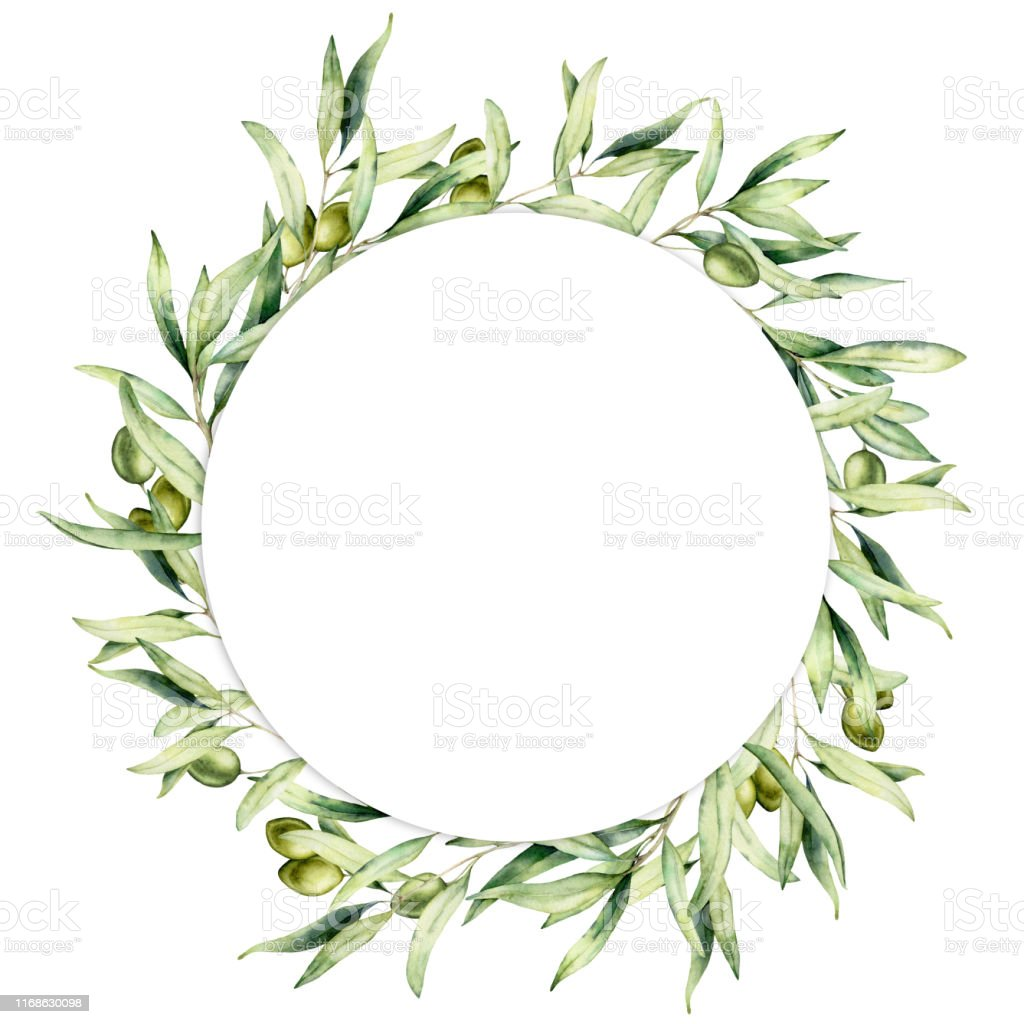 Watercolor wreath with green olive berries and leaves. Hand painted...