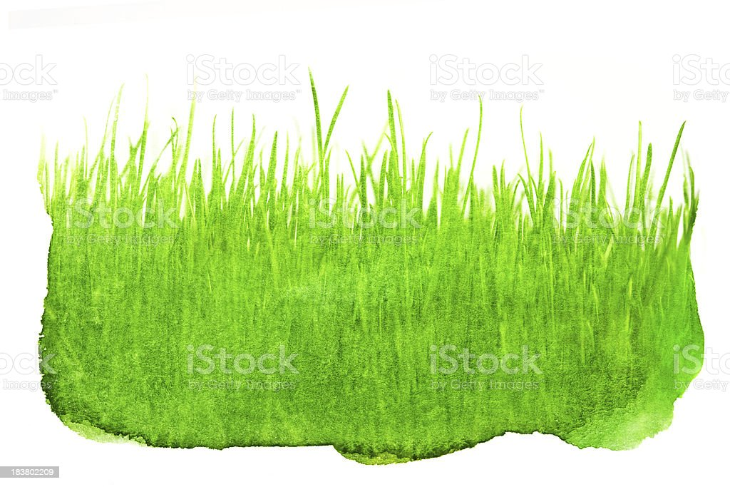 Watercolored Grass Backgrounds In Green royalty-free stock vector art