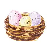 Watercolour easter eggs in a nest on white background. Watercolour festive illustration.