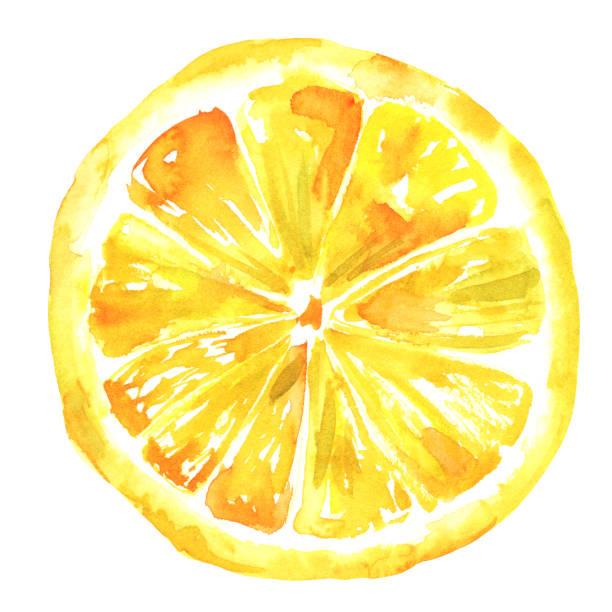 水彩レモン絞り、白で隔離 - レモン点のイラスト素材/クリップアート素材/マンガ素材/アイコン素材