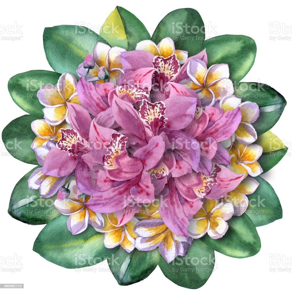 Watercolour Paint Floral Bouquet Of Tropical Flowers Orchid And ...