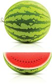 Vector illustration of ripe watermelon.