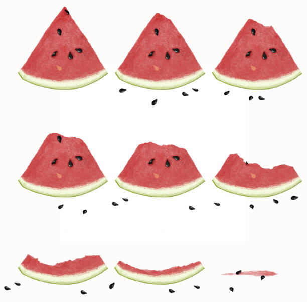 Royalty Free Watermelon Seed Clip Art, Vector Images ...
