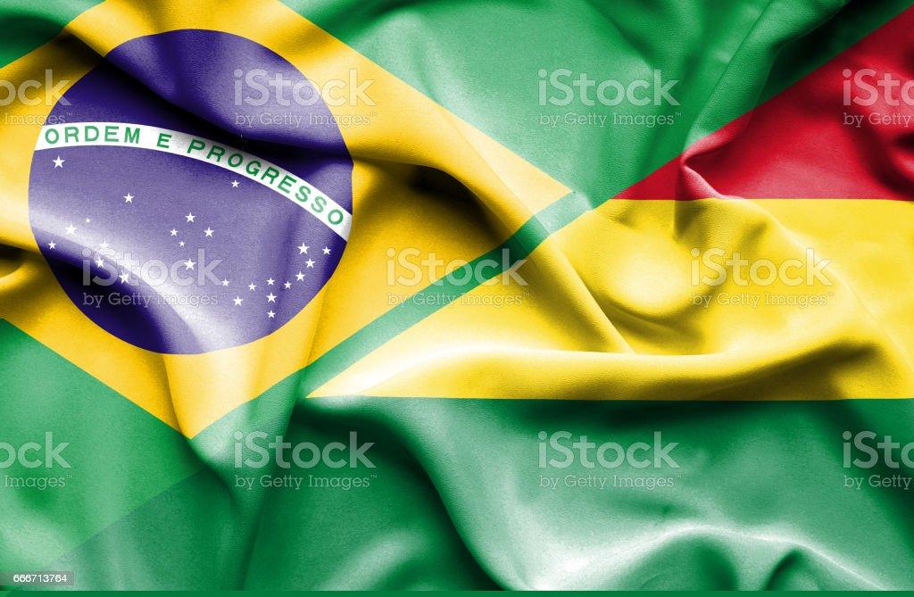 Waving flag of Bolivia and Brazil - ilustración de arte vectorial