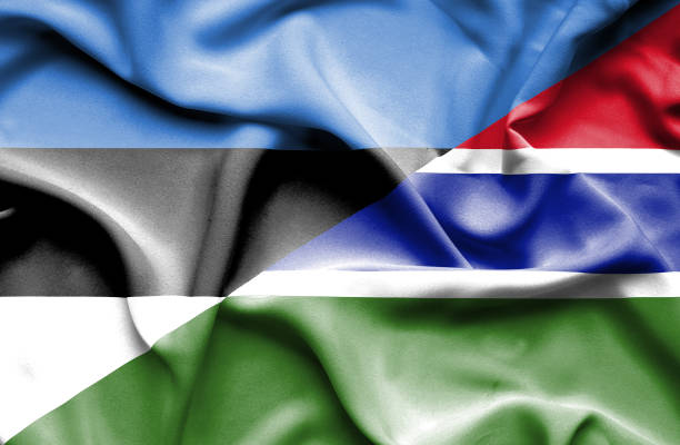 Waving flag of Gambia and Estonia vector art illustration