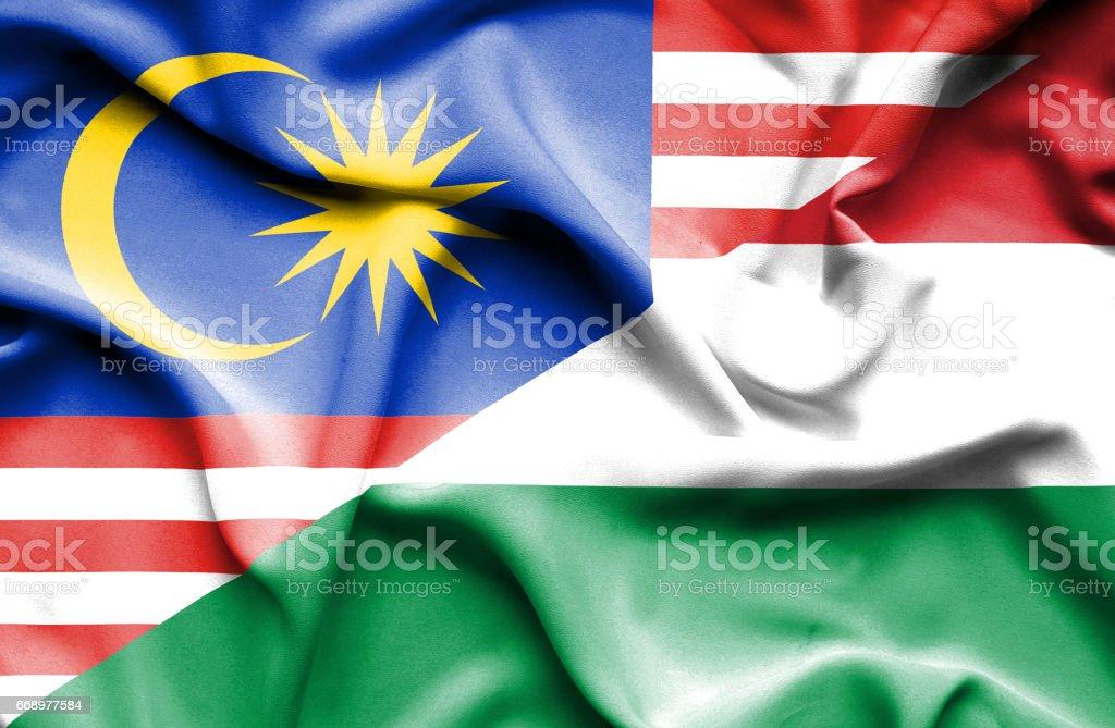 Waving flag of Hungary and Malaysia waving flag of hungary and malaysia - immagini vettoriali stock e altre immagini di accordo d'intesa royalty-free
