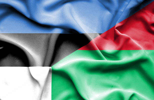 Waving flag of Madagascar and Estonia vector art illustration