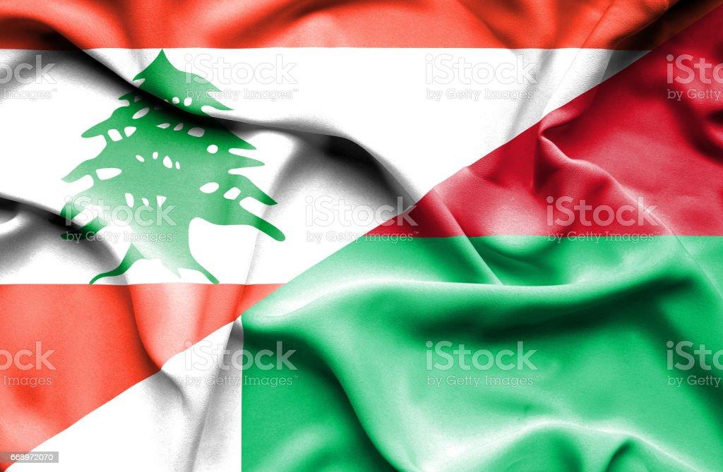 Waving flag of Madagascar and  Lebanon waving flag of madagascar and lebanon - immagini vettoriali stock e altre immagini di accordo d'intesa royalty-free