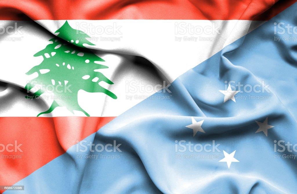 Waving flag of Micronesia and Lebanon waving flag of micronesia and lebanon - immagini vettoriali stock e altre immagini di accordo d'intesa royalty-free
