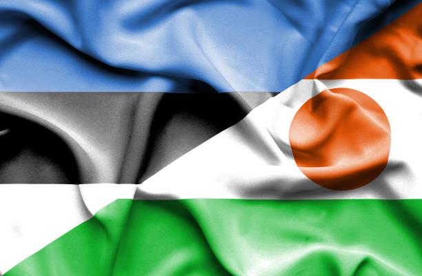 Waving flag of Niger and Estonia vector art illustration