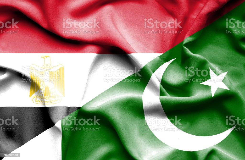 Waving Flag Of Pakistan And Egypt Stock Illustration
