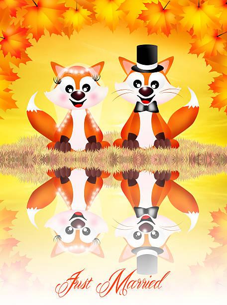 Mariage des renards roux - Illustration vectorielle
