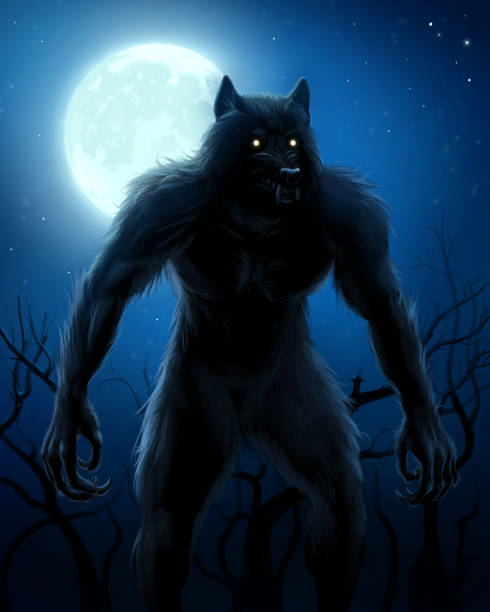 Werewolf and moon Werewolf on the night background with full moon. Digital painting. werewolf stock illustrations