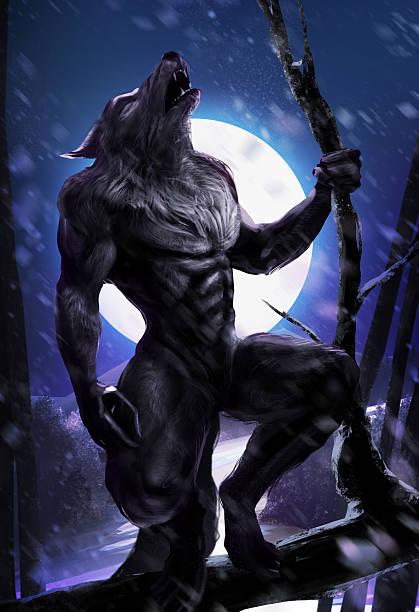 Werewolf howl Werewolf howling on night fullmoon forest backgroung werewolf stock illustrations