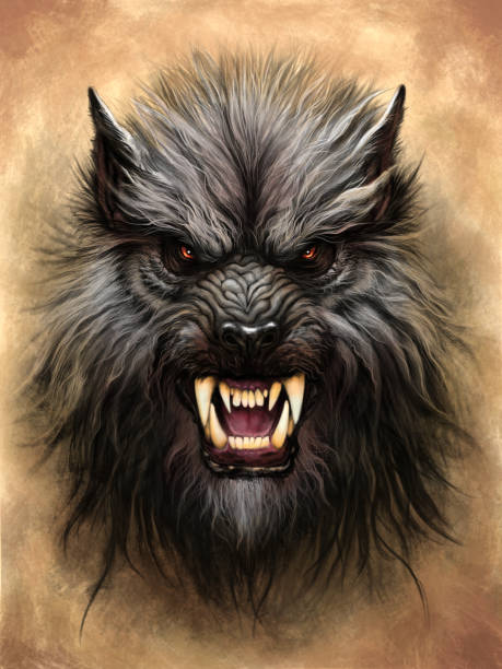 Werewolf on the stone background Werewolf head on the textured abstract background. Digital painting. werewolf stock illustrations
