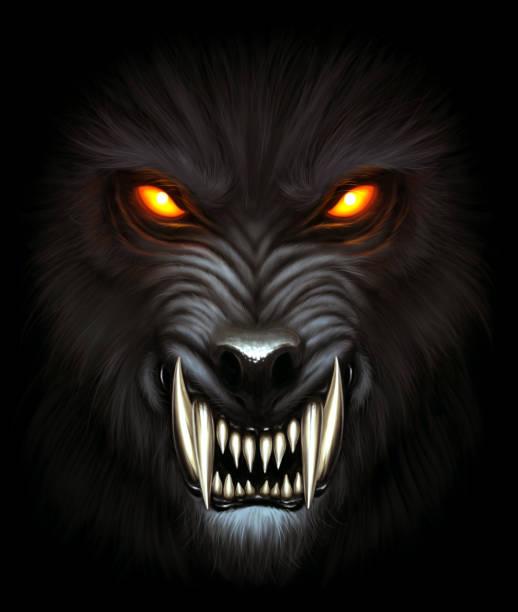 Werewolf portrait Angry werewolf face in darkness. Digital painting. werewolf stock illustrations