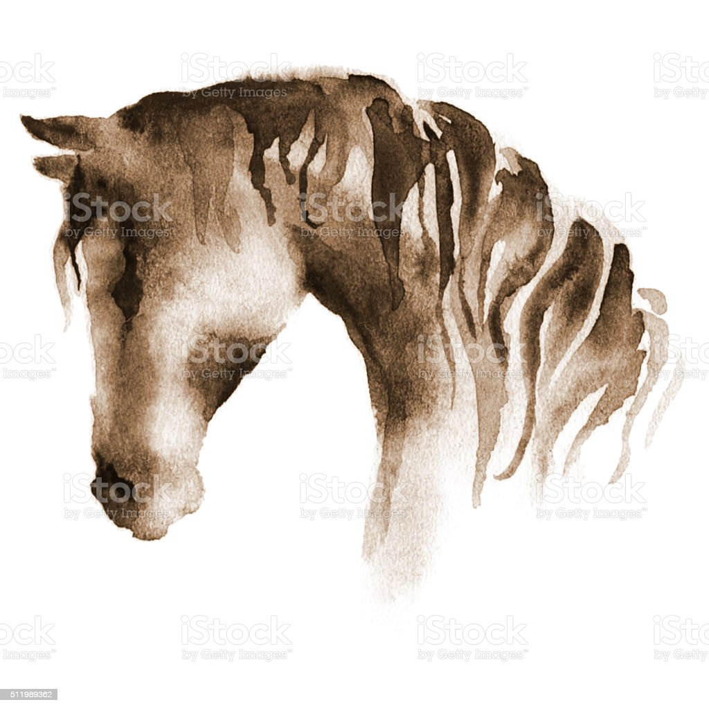 Wet watercolor horse head vector art illustration