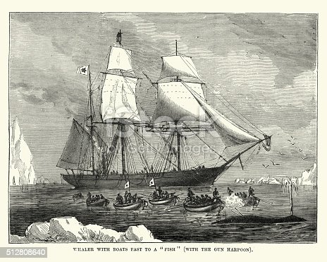 Vintage engraving showing a view of a Whaling boat fast to a whale with the gun harpoon.