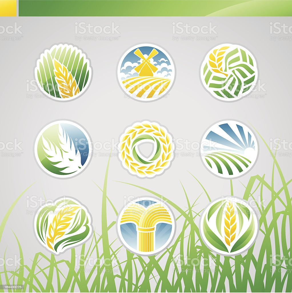 Wheat and rye. Icons set. royalty-free stock vector art
