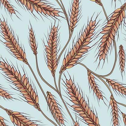 Wheat grain seamless pattern, harvest fall print, autumn crop design