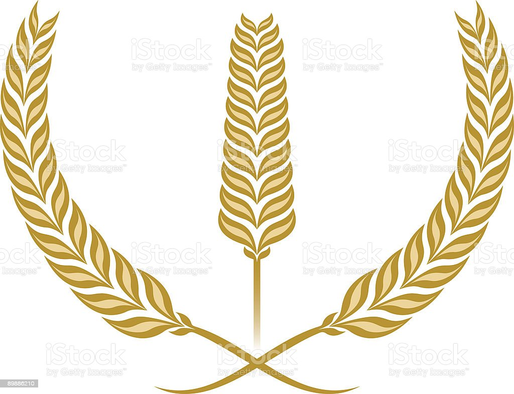 Wheat royalty-free wheat stock vector art & more images of abstract