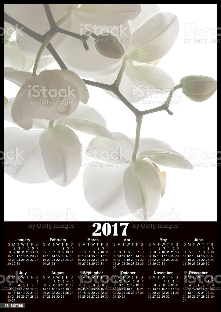 White flowers of orchid 2017 calendar design printable ベクターアートイラスト