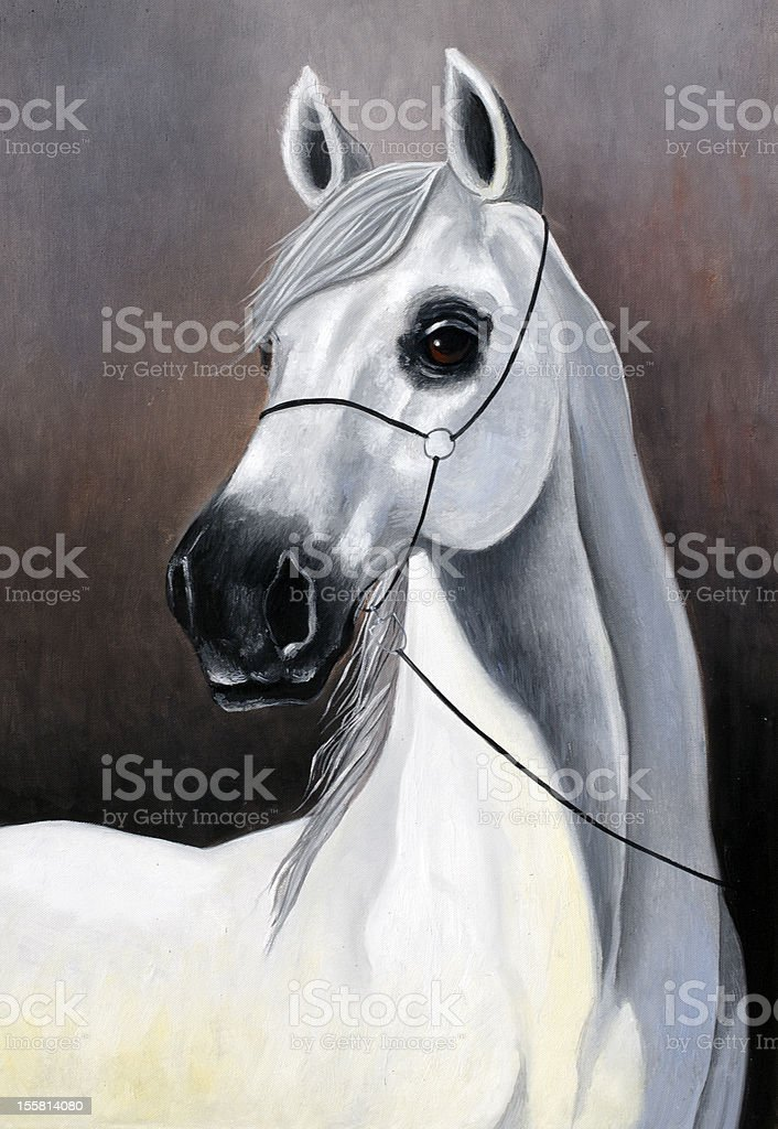 White Horse Stock Illustration Download Image Now Istock