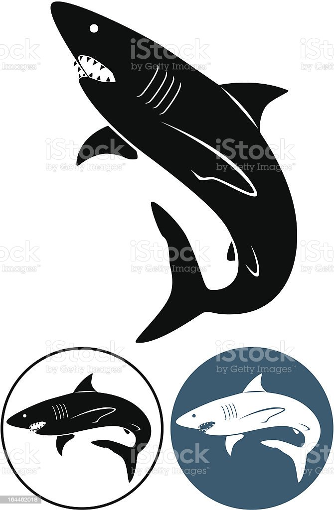 white shark the figure shows a white shark Animal stock vector