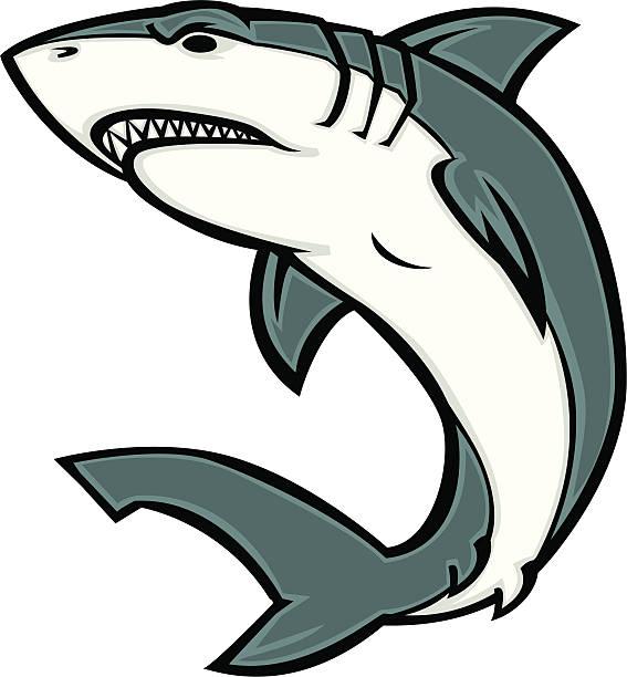white shark cartoon great white shark great white shark stock illustrations