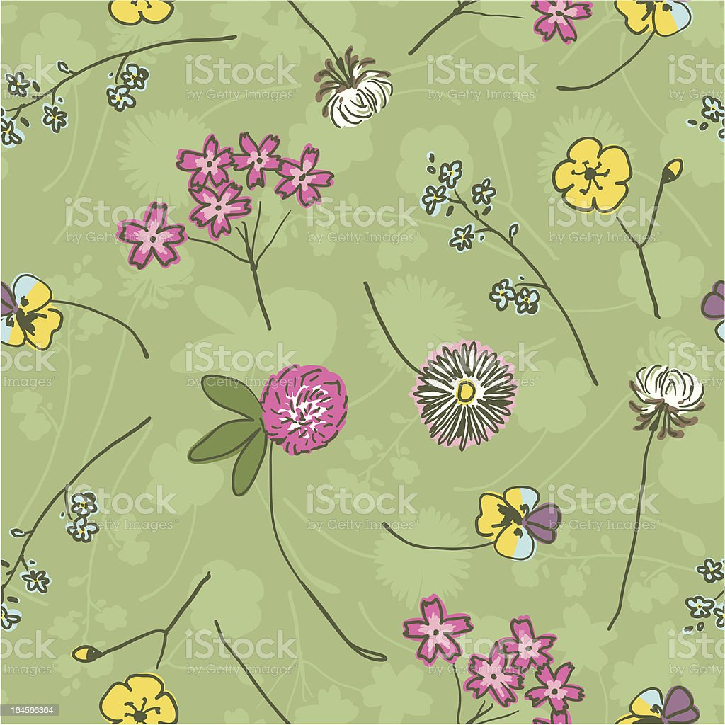 Wild flowers on green -  hand drawing royalty-free stock vector art