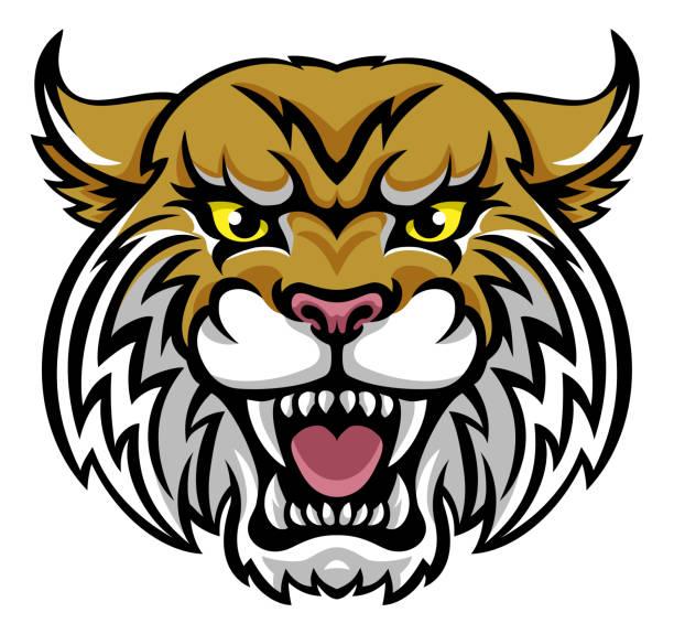 Wildcat Bobcat Mascot An angry looking wildcat or bobcat mascot animal character bobcat stock illustrations