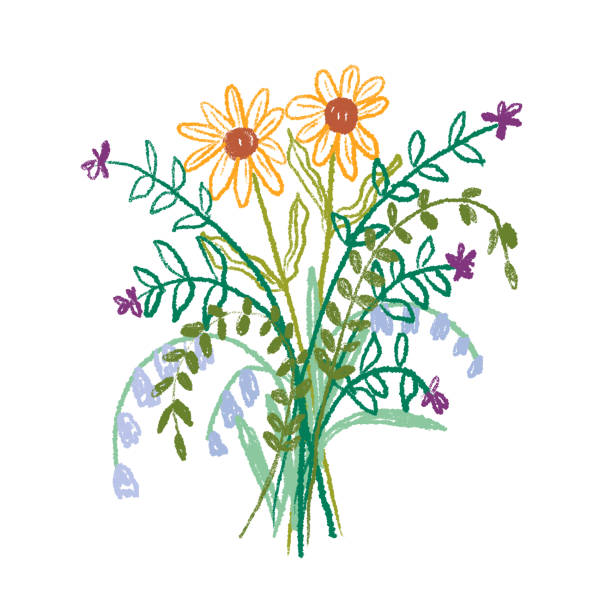 Wildflower bouquet drawing Hand drawn bunch of wild flowers kathrynsk stock illustrations