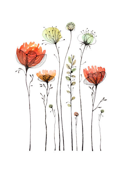 wildflowers and poppy painted in watercolor and ink pen. isolated on white background. a greeting card. - wildflowers stock illustrations, clip art, cartoons, & icons
